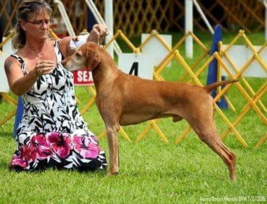 Ian Dunbar Dog In Canada